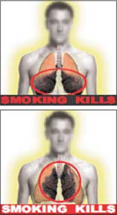 E Cigarette Menthol Liquid